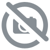 CD L'Attirail - Footsteps In The Snow